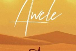 awele-768x768