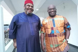 Pete Edochie, an icon of Nigerian movie industry - Gov Ikpeazu